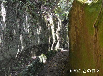 DSC_0616-no.jpg