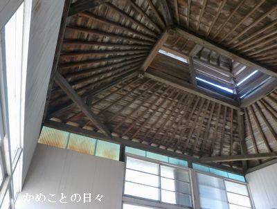 P1140205-koro.jpg