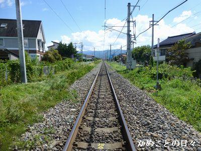 P1140213-rail.jpg
