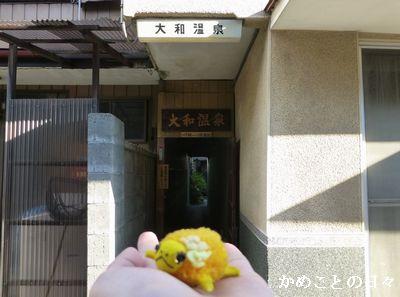 P1140244-yama.jpg