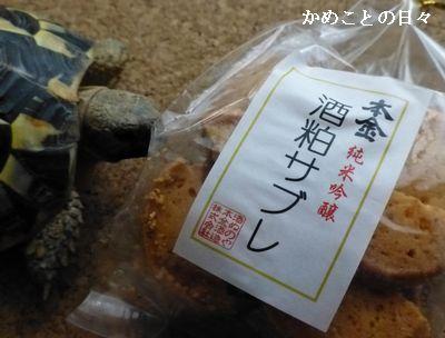 P1140623-sake.jpg