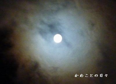 P1290258-moon.jpg