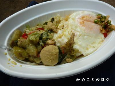 P1310152-curry.jpg