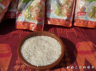 P1310190-rice.jpg