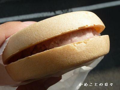 P1310688-monaka.jpg