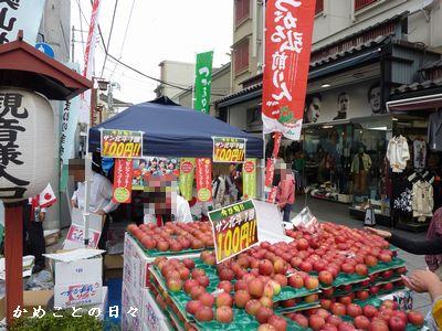 P1330138-apple.jpg