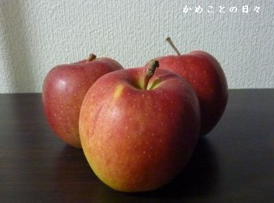 P1330315-apple.jpg