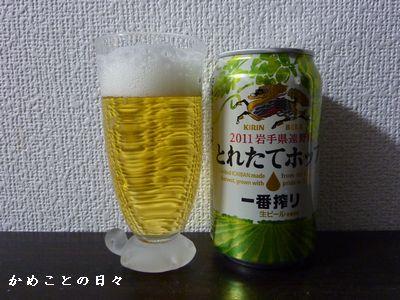 P1330580-beer.jpg