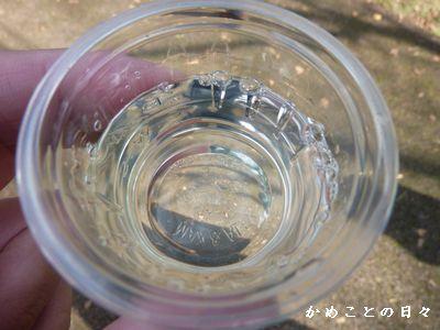 P1330857-sake.jpg