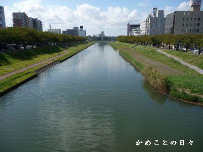 P1600261-kawa.jpg