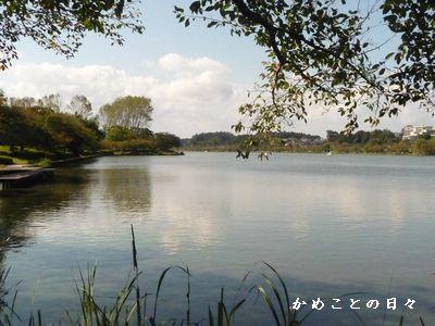 P1600290-senbako.jpg