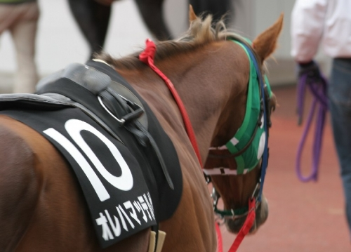【格好いい】日本っぽい馬名を考えるスレ