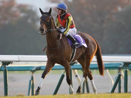 【名馬の条件】中山・阪神のG1で圧勝する馬が本物の名馬