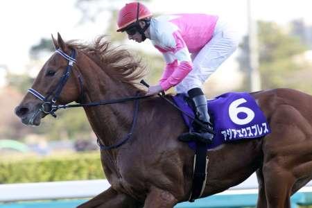 【競馬】2014年の牡馬クラシック路線すごすぎwww