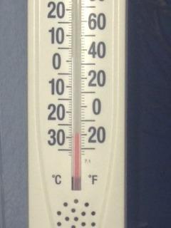 12月5日気温