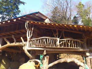 木の上の家2