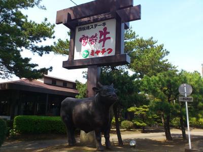 ミヤチク牛