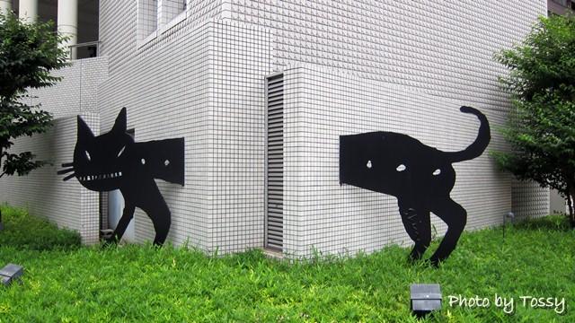 ビルを抜ける黒猫