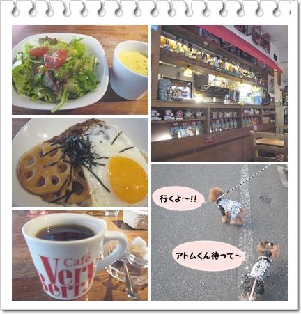 2cats_20111109225700.jpg