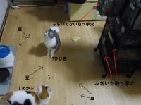 IMGP0322-2.jpg