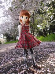 桜201204-01
