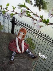 桜201204-03
