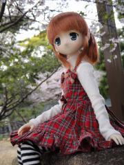 桜201204-08