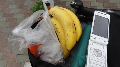 083104いただいたバナナ_convert_20110916125023