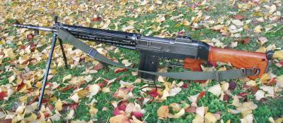 Type_64_Rifle_convert_20140218125308.jpg
