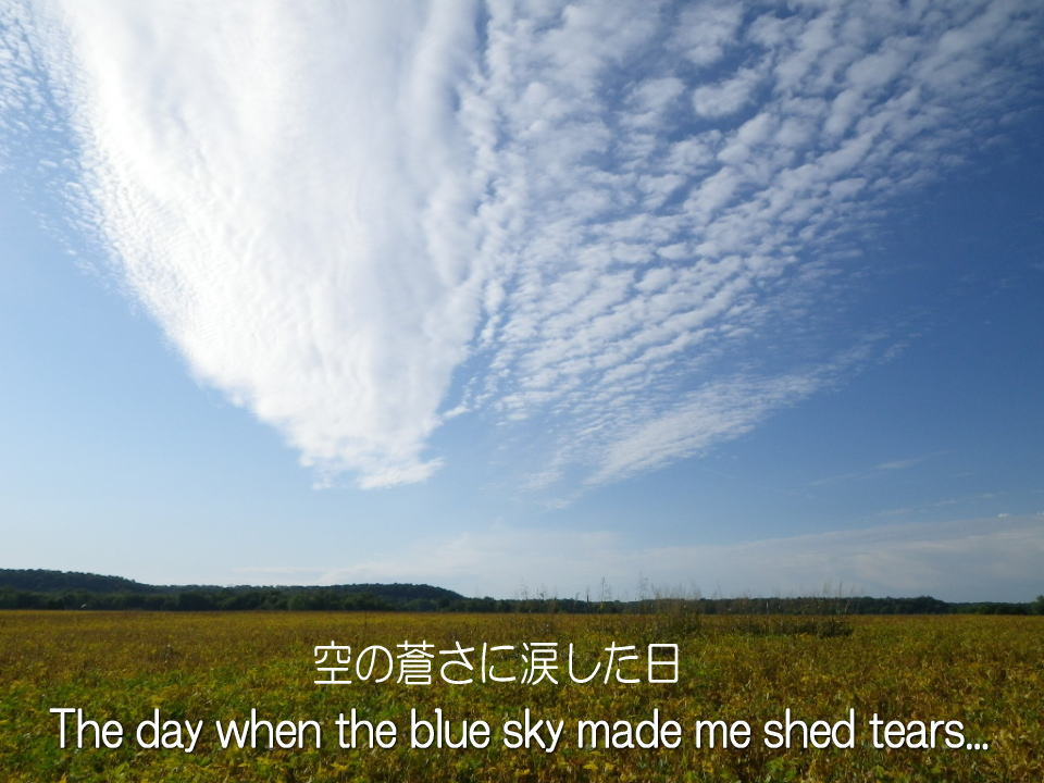 http://blog-imgs-48.fc2.com/k/a/y/kaytaka/blue_sky_and_tears.jpg