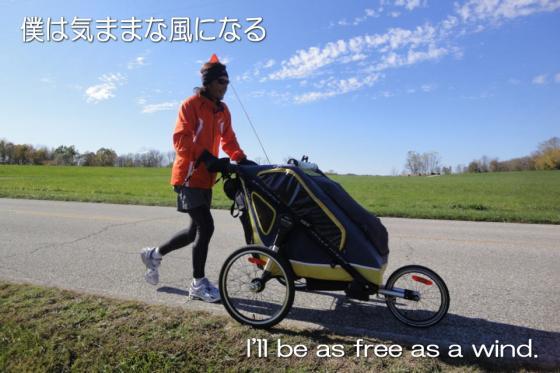 free_as_the_wind2.jpg