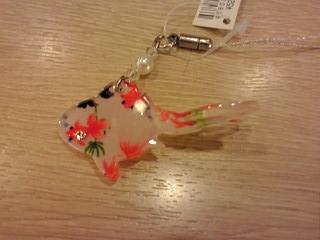 金魚 in 金魚