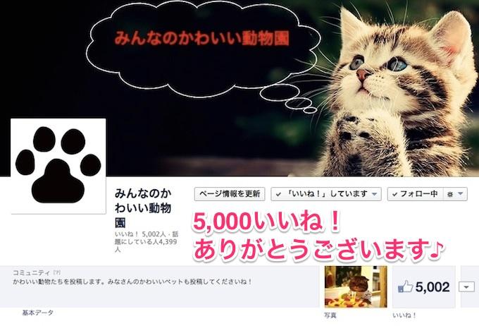 5000likes-13.jpg