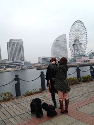 写真(2)saiko_R