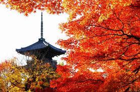 京都紅葉ランキング7位 真如堂 紅葉見頃