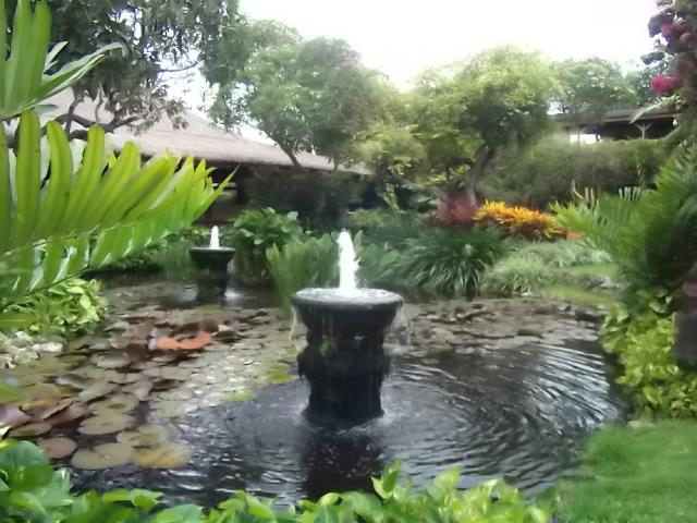 2012,ケララ~2013バリ島カット番 028