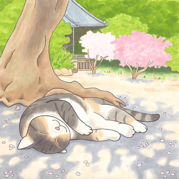 i__efude_sakura01.jpg