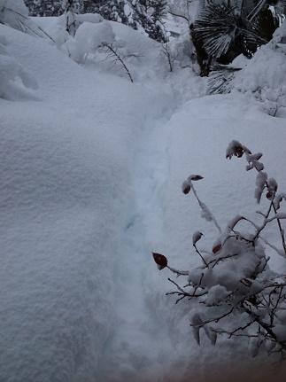 大雪ふり (4)