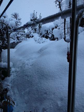 大雪ふり (5)