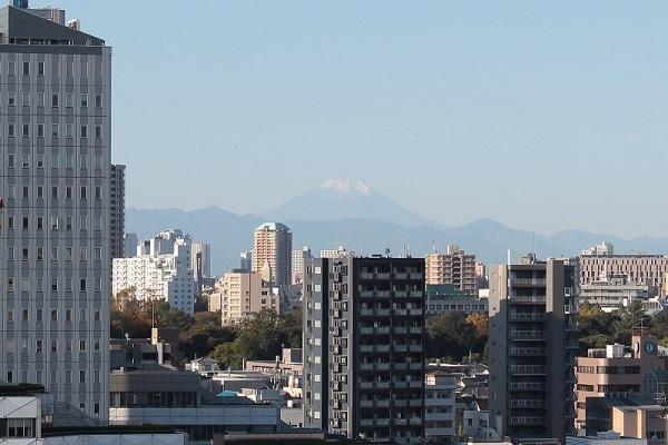 富士山と小石川植物園