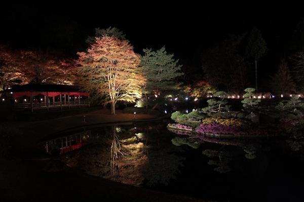 修善寺 虹の郷 池に映る紅葉ライトアップ