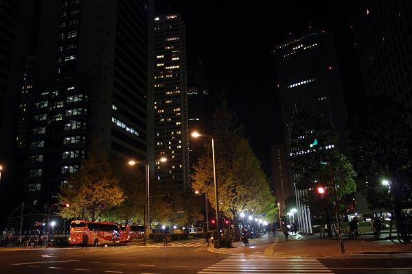 新宿の銀杏