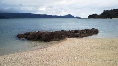 2011.10.5=朝の鯨浜2