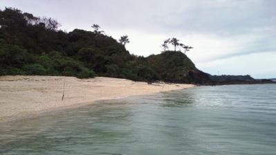 2011.10.5=朝の鯨浜4