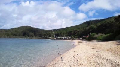 今朝の釣り3