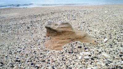 砂のカメ1