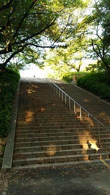 大阪城階段20140926