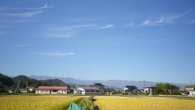 2011-10-19たんぼ