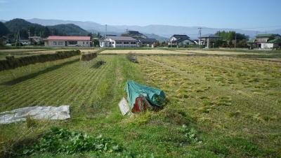 2011-10-20たんぼ