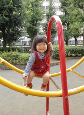 イチョウ公園2